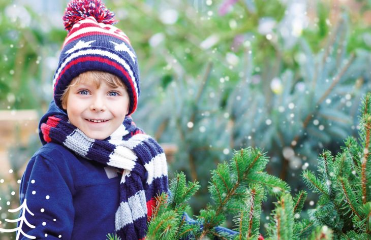 Weihnachtsbaumverkauf in Oberhausen